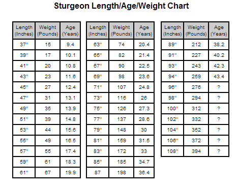 Weight And Age Chart Hobitfullring